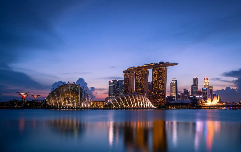 怎么留学新加坡?