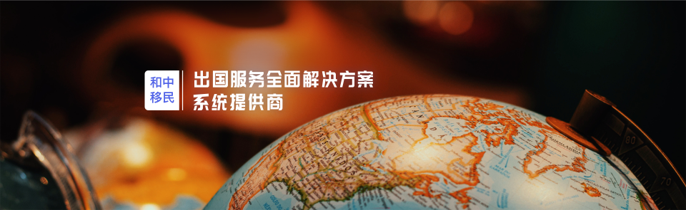 出国服务全面解决方案系统提供商